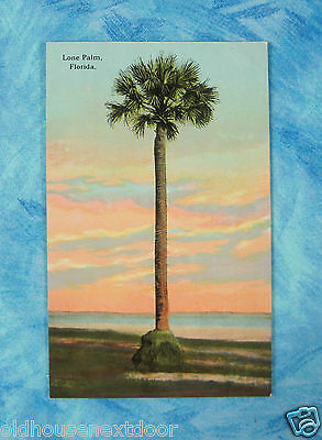 Lone Palm, Florida, Drew Co.   PC-9