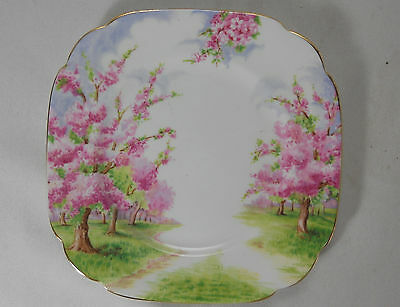 Royal Albert Blossom Time Bread and Butter Plate
