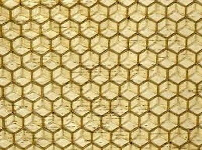 10X Brood Foundation (Unwired) - Beeswax  -  National Bee Hive Brood - Deep