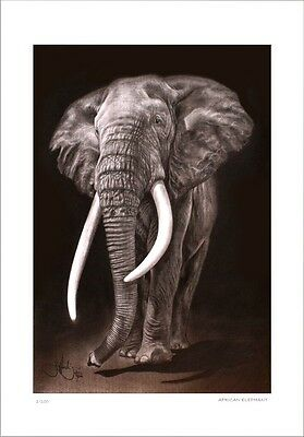 African Elephant  #2      Drawing          Limited Edition