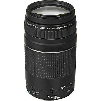 Canon EF 75-300mm f/4-5.6 III Telephoto Zoom Lens for T3, T3i, T5, T5i, 60D, 70D