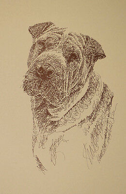 SHAR PEI DOG ART #34 Stephen Kline adds your dogs name free into print. HOT GIFT