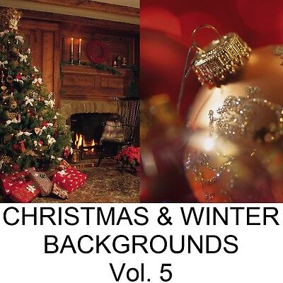 Christmas Winter Digital Photo Backgrounds Backdrops Green