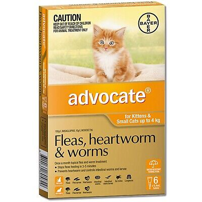 Advocate for Kittens and Small Cats Up to 4 kg 6 Month Pack  *GENUINE*