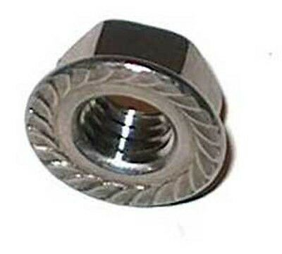 Stainless Steel Metric M6 Serrated Flange Nut 10 Pack