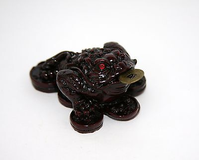 Three Legged Wealth Toad Coin Money Red Resin Frog Feng Shui