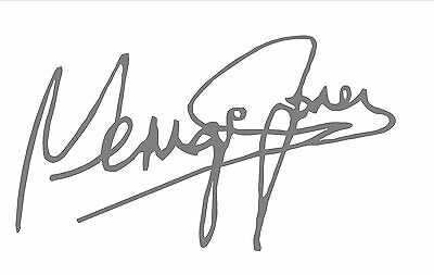 George Jones Autograph Design Decal / Sticker for Guitar , Wall or flat surface