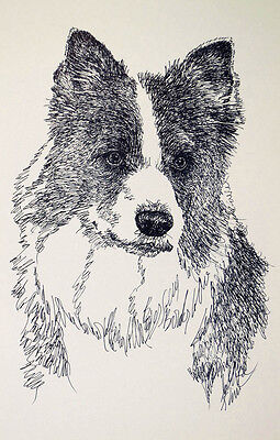 BORDER COLLIE DOG PRINT #48 DRAWN FROM WORDS Kline will add your dogs name free