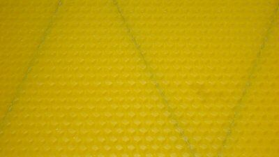 10X Shallow Foundation (Wired) - Beeswax  -  National Bee Hive Super