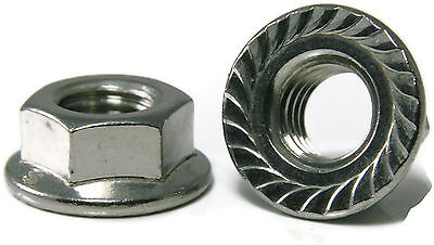 Stainless Steel Hex Flange Nut Serrated UNC 1/4-20, Qty 100