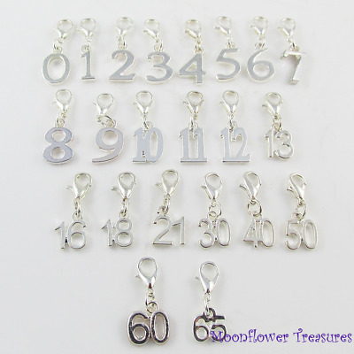 Silver Plate Birthday Milestone Age Number Charm fit Clip on Charm Bracelet