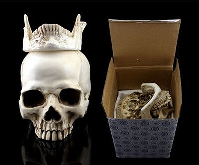 White Human Skull Replica Resin Model Medical Lifesize Realistic NEW 1:1