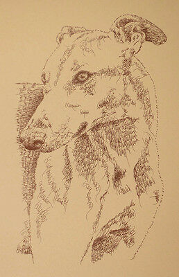 Greyhound dog art portrait drawing two PRINT 39 Kline adds dog's name free. GIFT