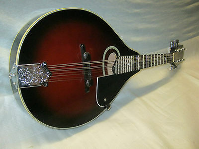 Richwood Mandolin