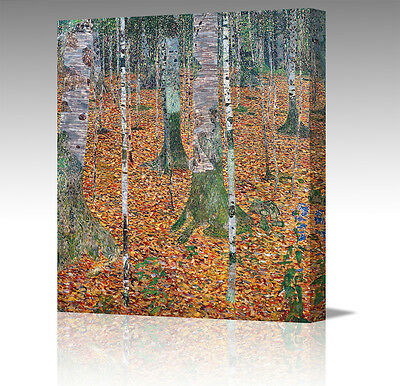 20x20 Inch Gustav Klimt Birch Forest Trees Canvas Modern Wall Art Picture Print
