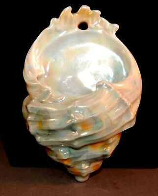 RARE Royal Bayreuth Figural Shell Wall Pocket Match Safe Iridescent Glaze!