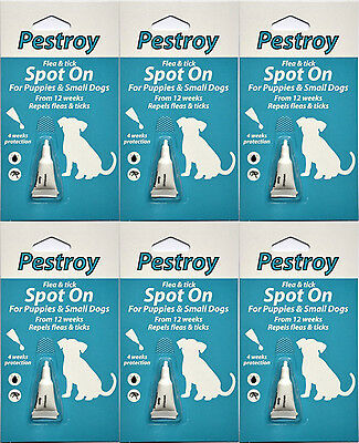6 Months Pestrroy Flea & Tic treatment Puppies & Small Dogs For The Price of 5!