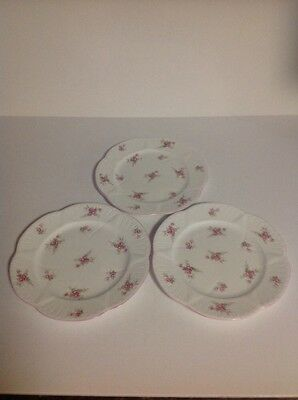 Shelley Bridal Rose Pattern Lunch Plates