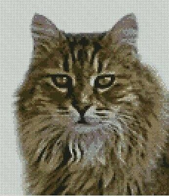 "Tabby Cat Kitten Long Haired Counted Cross Stitch Kit 8.5"" x 9.5"" C2348"