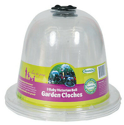 3 Haxnicks Clear Plastic Baby Bell Jar Cloches + optional Ground Pegs: 20 x 25cm