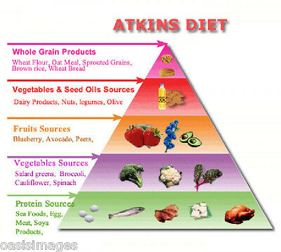 1000 ebooks on cd with resale rights free uk post 999 the atkins diet ebook on cd lose weight easily with 1000 recipes carb counter fandeluxe Image collections