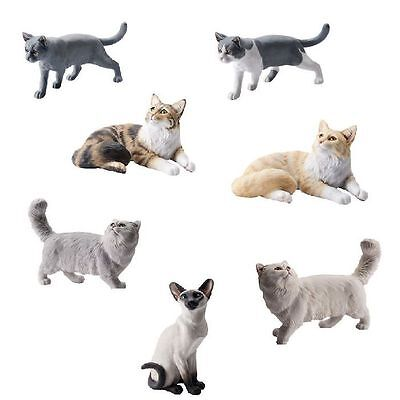 John Beswick Connoisseur Cats Animal Persian,Maine Coon,Siamese,Shorthair