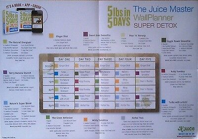 5lbs in 5 days A3 Wall Planner by Jason Vale The Juice Master NEW
