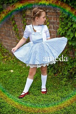 Halloween Girls Wizard of OZ Dorothy Birthday Party Dress Blue Lace Costume 2-5Y