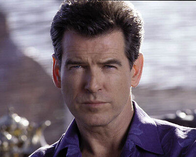 Pierce Brosnan [1027551] 8x10 photo (other sizes available)