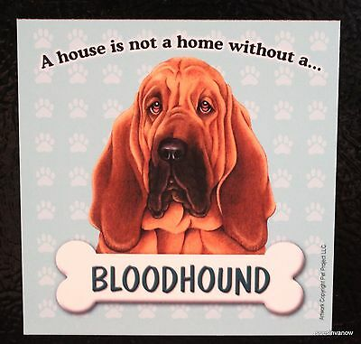 Bloodhound Magnet Dog Car RV A House Is Not A Home Puppy Refrigerator Anywhere