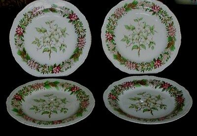 """4 Pcs Ridgway England American State Flowers Dogwood 9"""" Lunch Plates"""