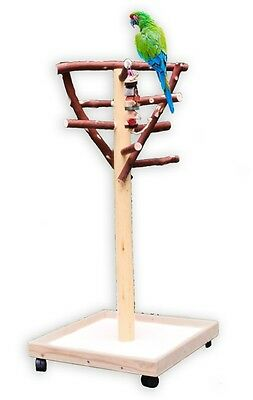 AFS2 Madrone Activity Center Parrot Tree Bird Stand Toy Play Gym lik Ribbon Wood