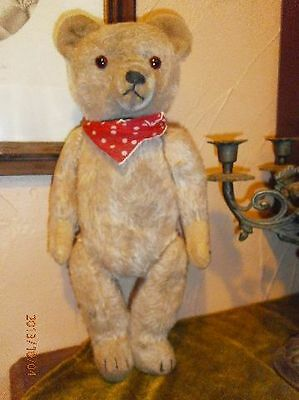 Antique Hermann teddy with red scarf
