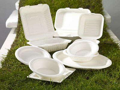 White Biodegradable Baggasse Sugarcane Food Containers Paper Hot Cold Disposable