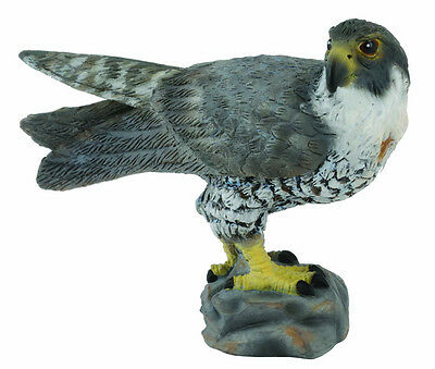 *BRAND NEW* PEREGRINE FALCON BIRD MODEL by COLLECTA *FREE UK POSTAGE*