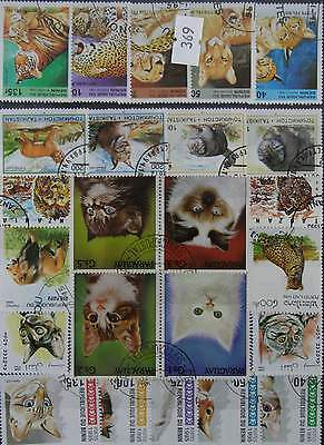 50 Cats stamps in packet  (369)