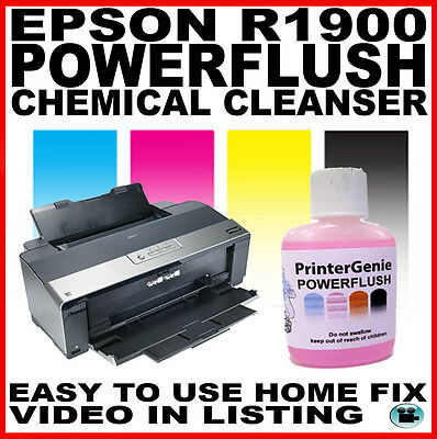 Epson R1900 Print Head Cleaner:  Nozzle Flush to Unblock Printer Clogged Heads