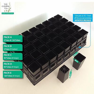 40-cell Plastic Trays x3 with 40mm tube pots x120. For Plants Cuttings Seedling.