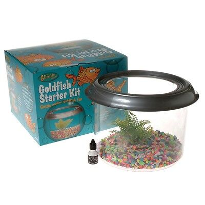 Armitage Gussie Goldfish Bowl & Starter Kit Aquarium Fish Tank