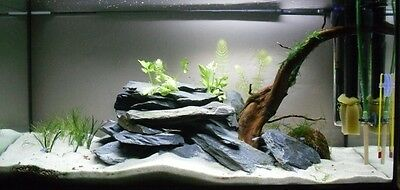 5 Kg Natural Black Slate Stone For An Aquarium Vivarium Rock