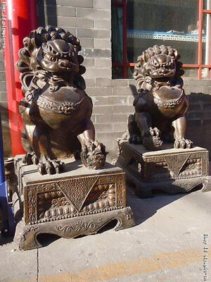 """42"""" old Huge China bronze gild carved finely Foo Dogs lion Pair Statues"""