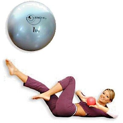 1 lb Pair Weighted Pilates Core Conditioning Aerobics Fitness Toning Balls
