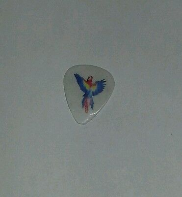 Foo Fighters Guitar Pick Pat Smear