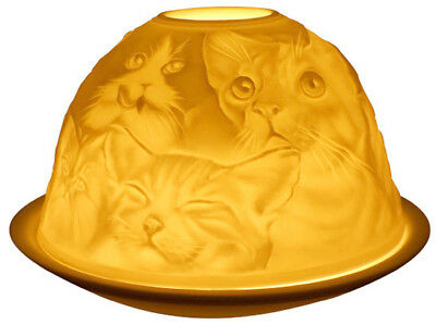 Light-Glow Cats Tealight Candle Tea Light Votive Dome Ceramic Gift Boxed