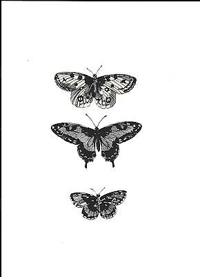 3 Dramatic Black and White Butterfly Fabric Iron On Appliques