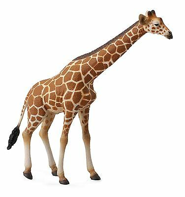 *NEW* ADULT RETICULATED GIRAFFE MODEL ANIMAL by COLLECTA 88534 - FREE UK POSTAGE