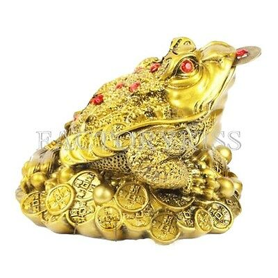 Feng Shui Golden Color Frog Toad Lucky Money Gifts Home Decoration Size S SOZ