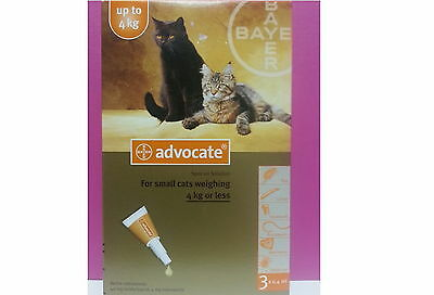 Advocate for Cats up to 4 kg Small Kittens Cats 12 pack Flea and Lice Treatment