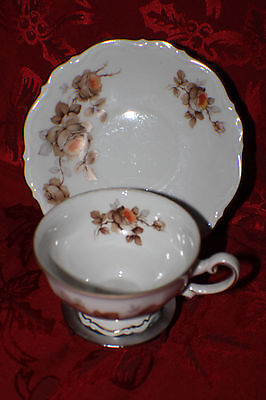 MITTERTEICH PORCELAIN NORWAY ROSE PATTERN CUP AND SAUCER MADE IN GERMANY