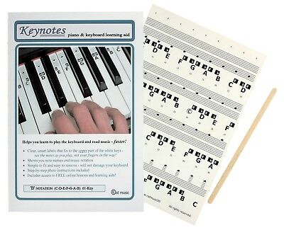 KEYNOTES PIANO MUSIC NOTE STICKERS for 49-KEY or 61-KEY KEYBOARD + LESSON LINKS